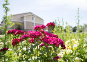 Denver gardens exterior with flowers 2 low res